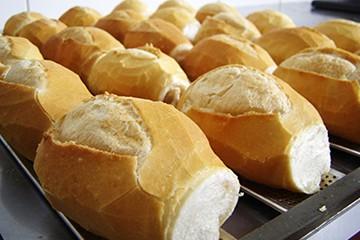 Padeiro Pasta
